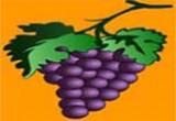 لعبة حبات العنب