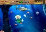لعبة السمكة الجديدة 2014