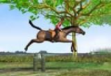 لعبة الحصان وتخطي الحواجز