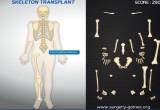 لعبة ترتيب عظام الهيكل العظمي