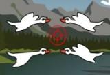 العاب صيد الطيور