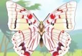 لعبة تلوين الفراشات