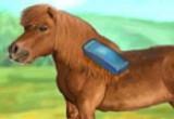 العاب تنظيف الحصان 2014