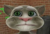games talking tom cat