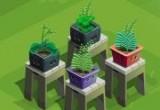 العاب زراعة النباتات و بيعها